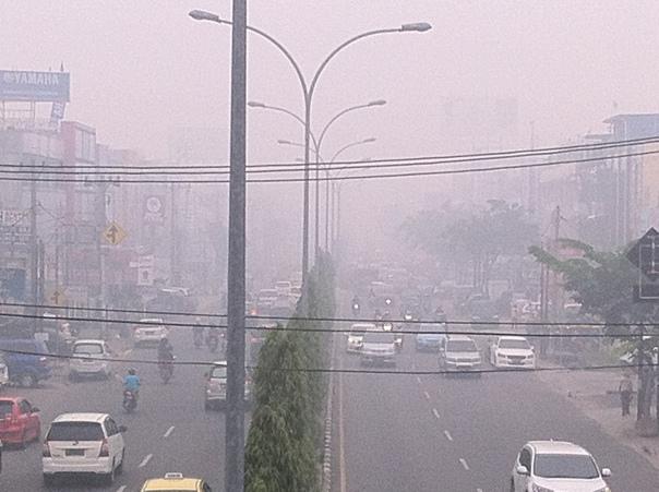 Kota Pekanbaru diselimuti oleh kabut asap